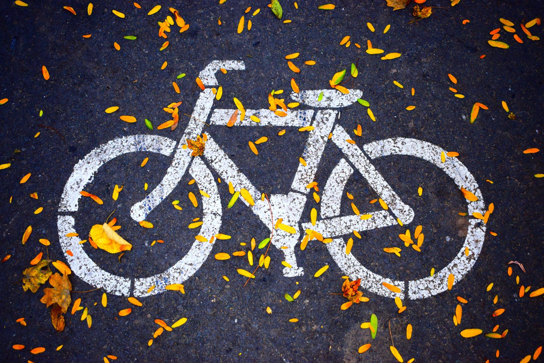 Fahrradüberdachungen – wofür sie gut sind